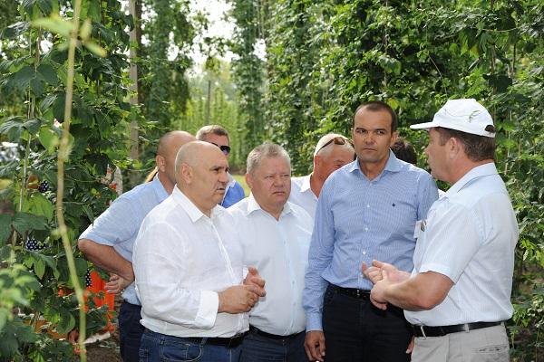 ВЧувашии пройдёт совещание повопросу развития хмелеводства в Российской Федерации