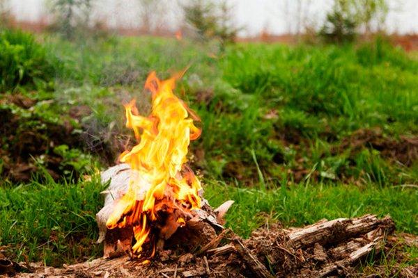 ВВолгоградской области больше неожидают пожаров